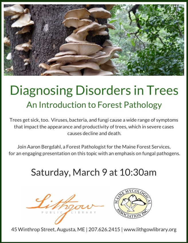 Diagnosing Disorders in Trees flyer